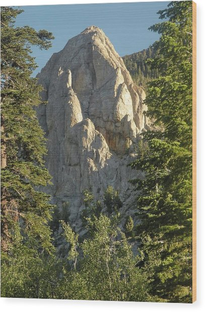 Mammoth Rock Wood Print by Peter Hennessey