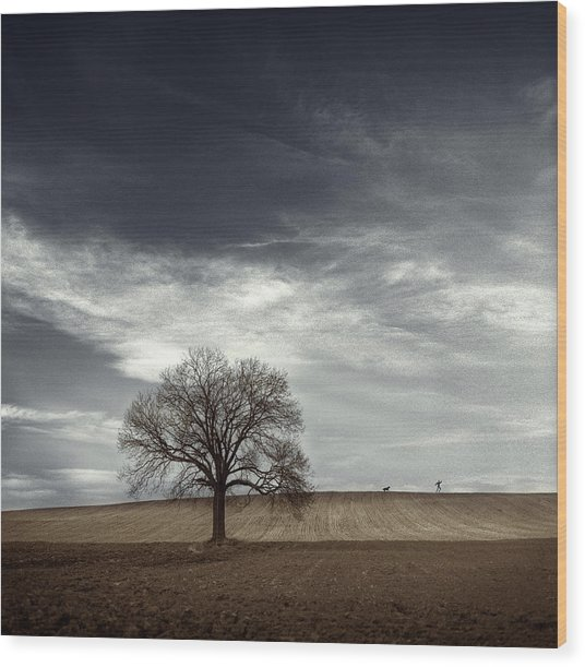 Man Hounded By Dog Wood Print by David Heger