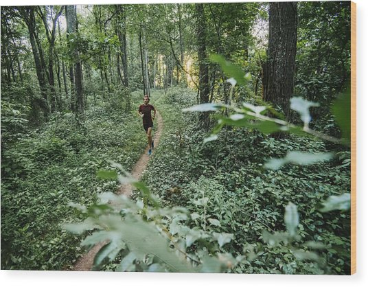 Man Jogging In Forest Along Mountain To Sea Trail, Asheville, North Carolina, Usa Wood Print by Andy Wickstrom / Aurora Photos
