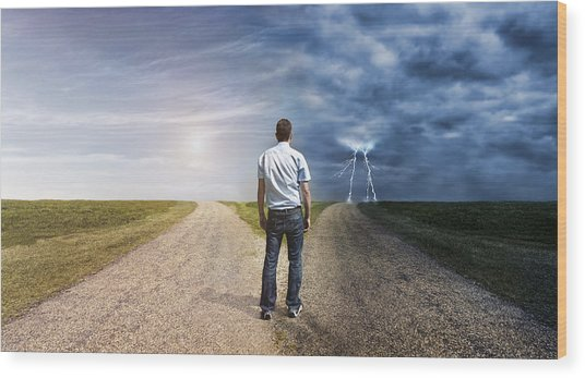 Man Must Decide His Way Forward To Success Or Failure Wood Print by Mikkelwilliam