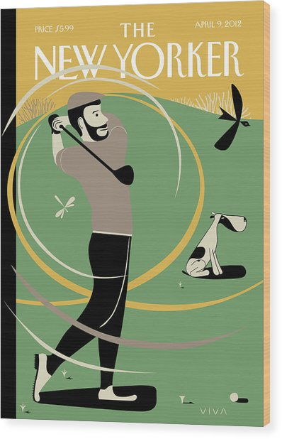 Man Taking A Shot On The Golf Course. A Whiff Wood Print