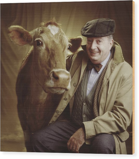 Man With Cow Wood Print by Ken Tannenbaum