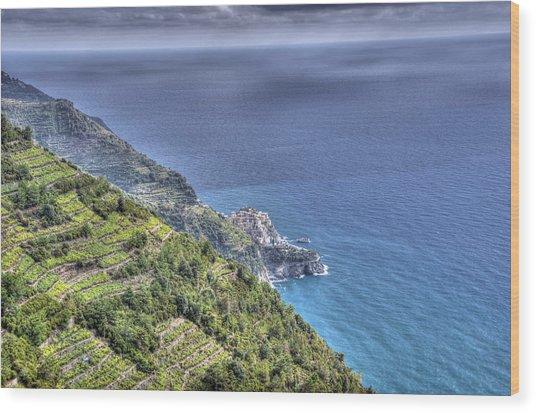 Manarola By The Sea Wood Print