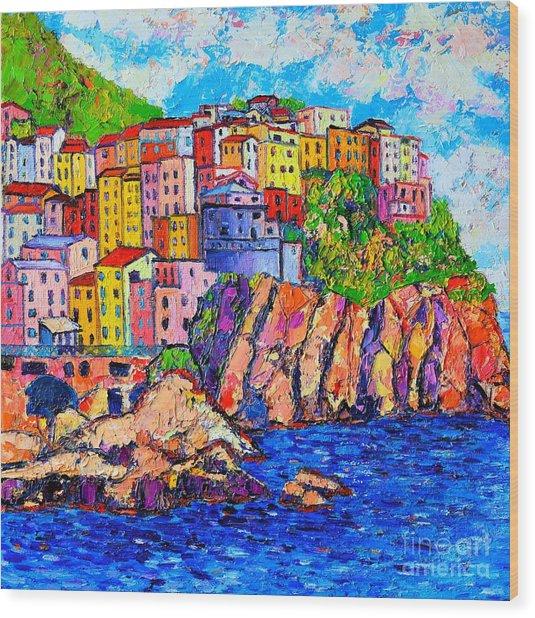 Manarola Cinque Terre Italy Detail Wood Print