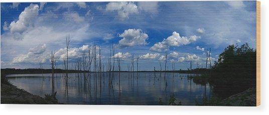 Manasquan Reservoir Panorama Wood Print