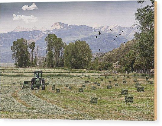 Mancos Colorado Landscape Wood Print