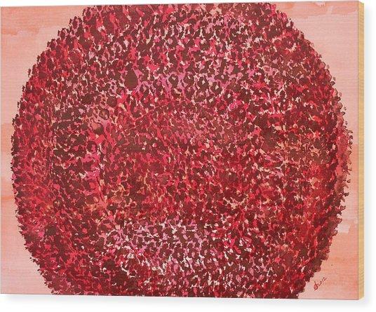 Mandala Sun Original Painting Wood Print