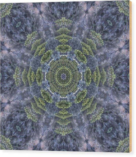 Mandala41 Wood Print