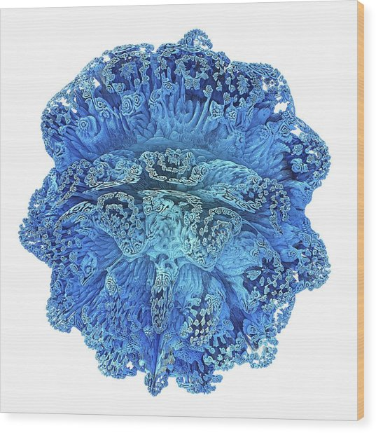 Mandelbulb Fractal Wood Print