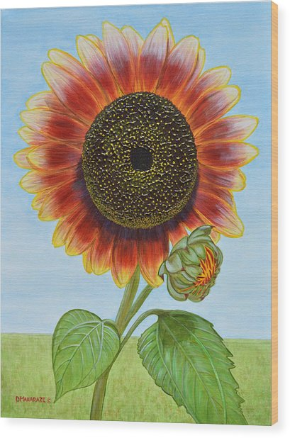 Mandy's Magnificent Sunflower Wood Print