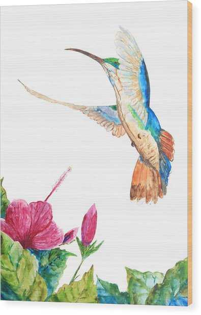 Mango Hummingbird Wood Print