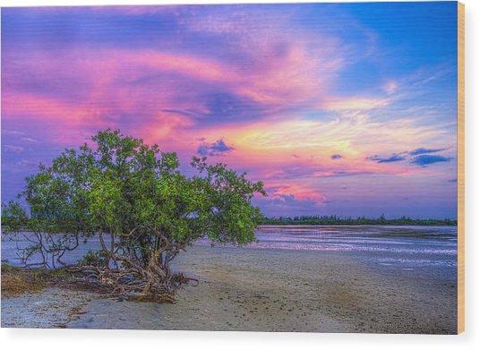 Mangrove By The Bay Wood Print