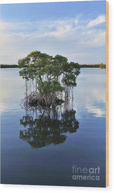 Mangrove Island Wood Print by Andres LaBrada
