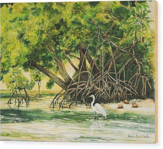 Mangrove Morning Wood Print
