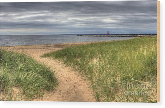 Manistique Beach And Lighthouse Wood Print