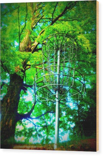 Maple 18 Wood Print