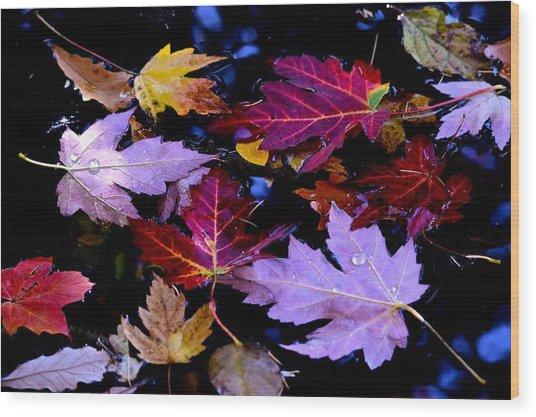 Maple Leaf Float Wood Print