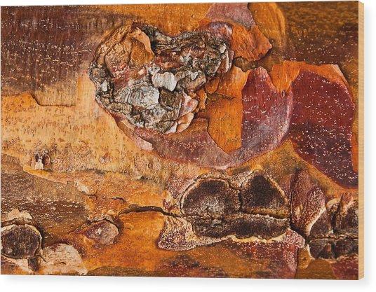 Maple Tree Bark Wood Print