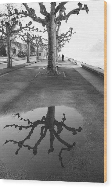 Maples Along Quai Perdonnet Wood Print
