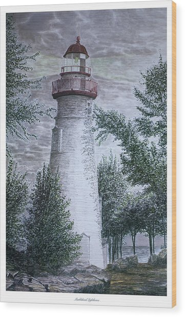 Marblehead Lighthouse Wood Print by Frank Evans