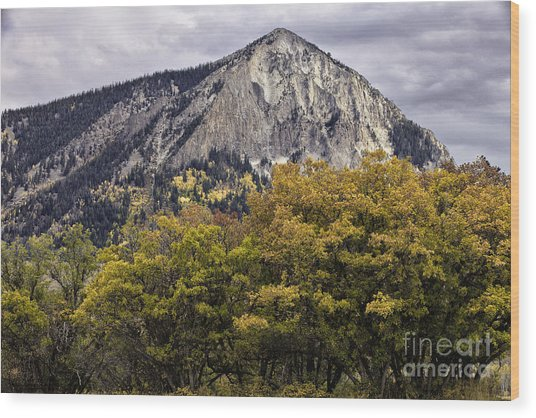 Marcellina Mountain Wood Print