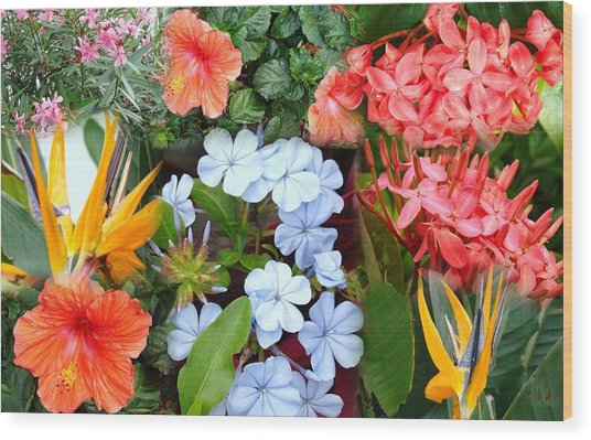 Marco Flowers Wood Print