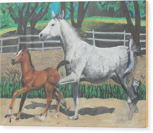 Mare And Colt Wood Print