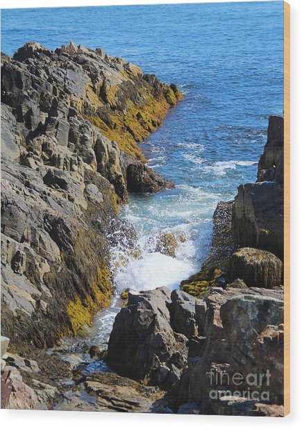 Marginal Way Crevice Wood Print