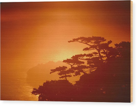 Marin County Sunset Fog Wood Print