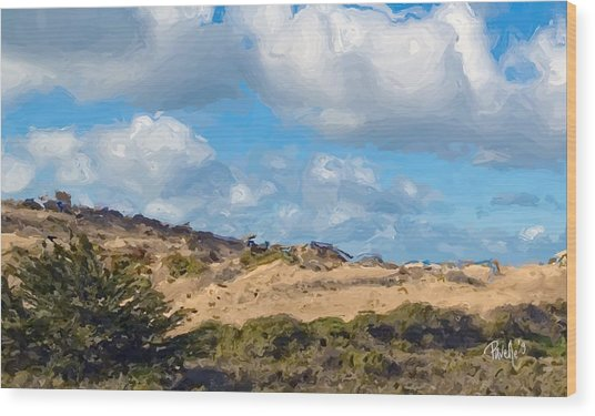 Marina State Beach Dunes Iv Wood Print by Jim Pavelle