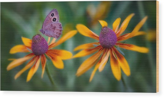 Mariposa Dos Flores Wood Print