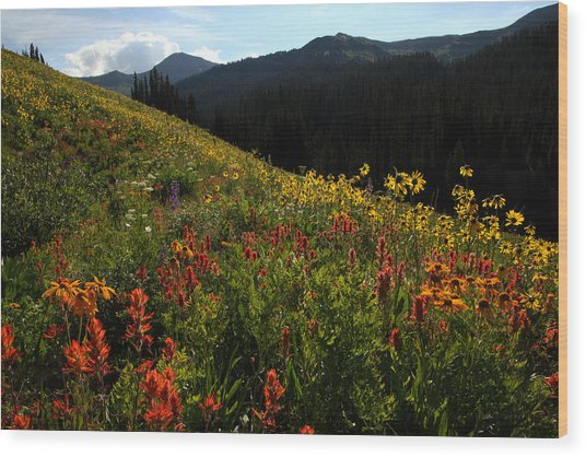 Maroon Bells Wilderness Wood Print