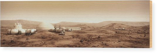 Wood Print featuring the digital art Mars Settlement Landscape With Farm by Bryan Versteeg