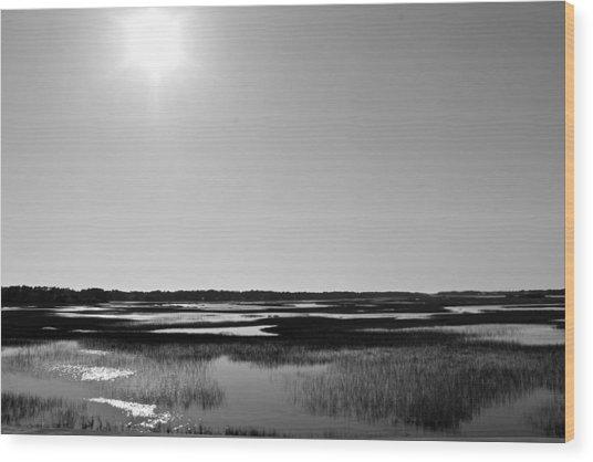 Marsh Beauty Wood Print