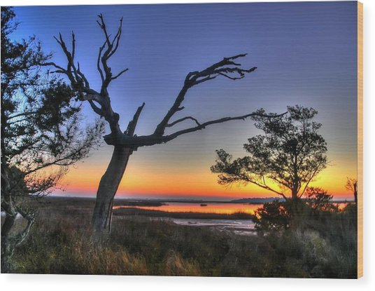 Marsh Tree Sunrise Wood Print