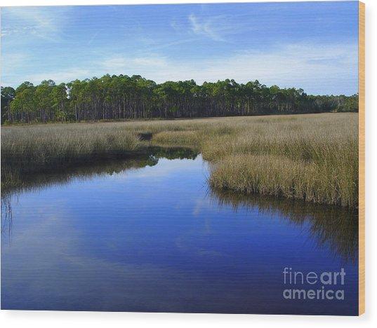 Marsh Water Creek Wood Print