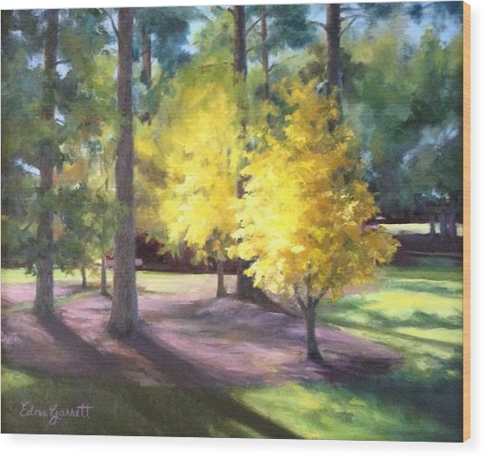 Marshallville Landscape With Yellow Trees Wood Print