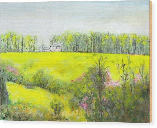 Maryland Landscape Springtime Rt40 East Original Painting Wood Print