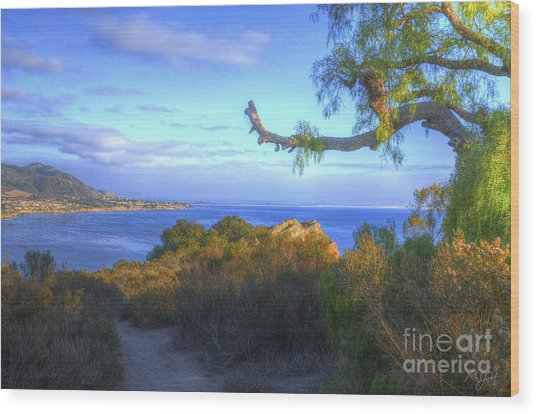 Masterpiece Coastline Wood Print