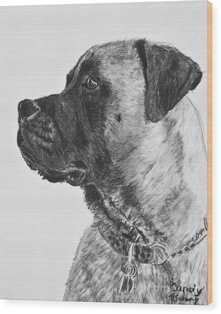 Mastiff In Profile Wood Print