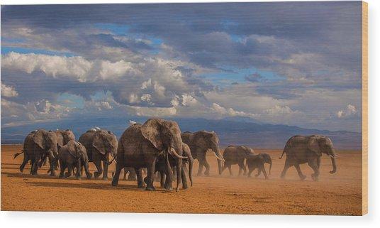 Matriarch On Amboseli Wood Print by Pieter Ras