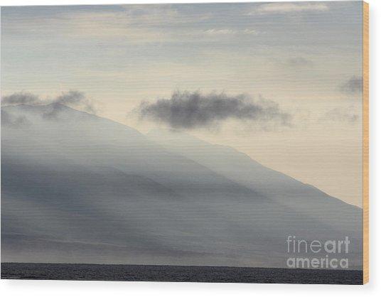 Maui In Gray Wood Print