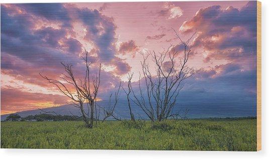 Maui Mudflats Wood Print