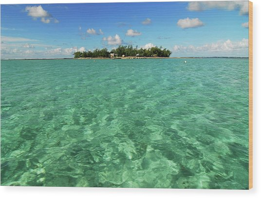 Mauritius, Blue Bay, Turquoise Rippled Wood Print