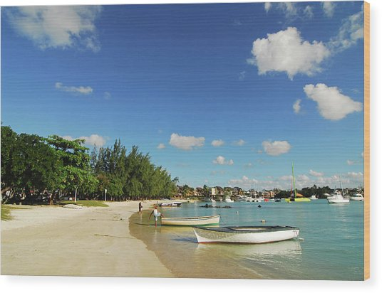 Mauritius, Grand Baie, Boat At Water's Wood Print