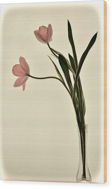Mauve Tulips In Glass Vase Wood Print