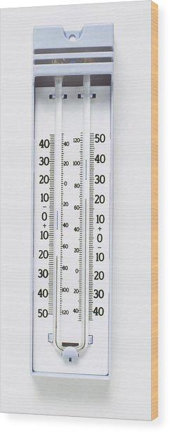 Maximum-minimum Thermometer Wood Print by Dorling Kindersley/uig