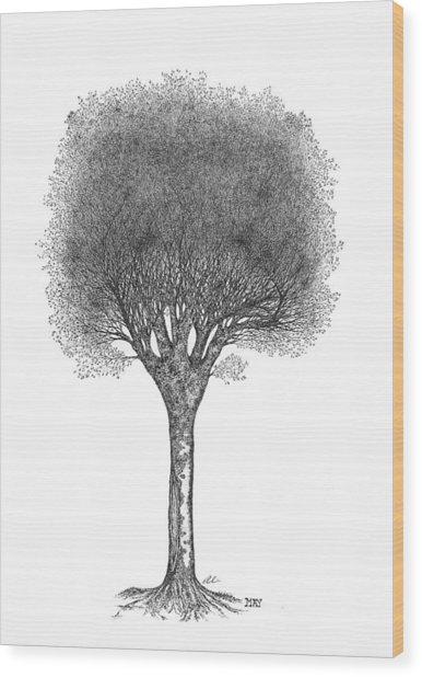 May '12 Wood Print