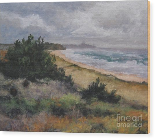 May Storm - Montauk Wood Print by Gregory Arnett