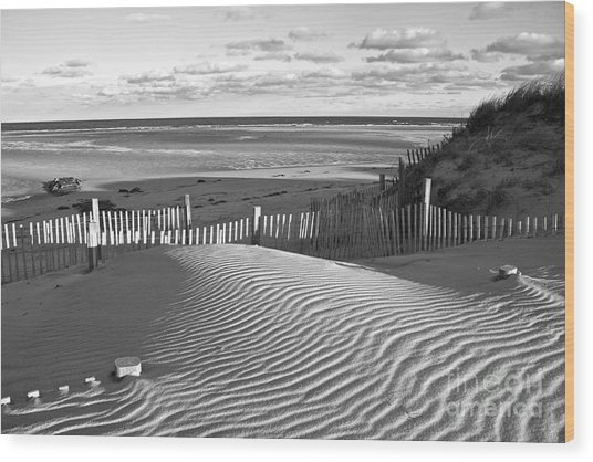 Mayflower Beach Black And White Wood Print